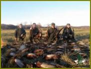 Положительные результаты объединения охотников