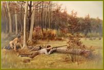 Условия спортивной охоты