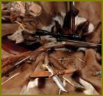 Открытие ружейной охоты
